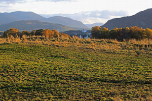 looking-S-to-the-northern-settlement-boundary-of-Aviemore-from-the-Granish-proposed--go-kart-site-300
